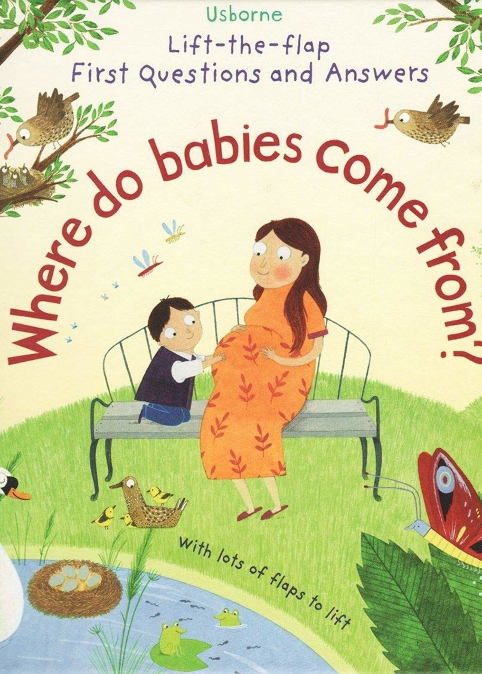 Usborne Where Do Babies Come From? Lift-the-flap - Board Book
