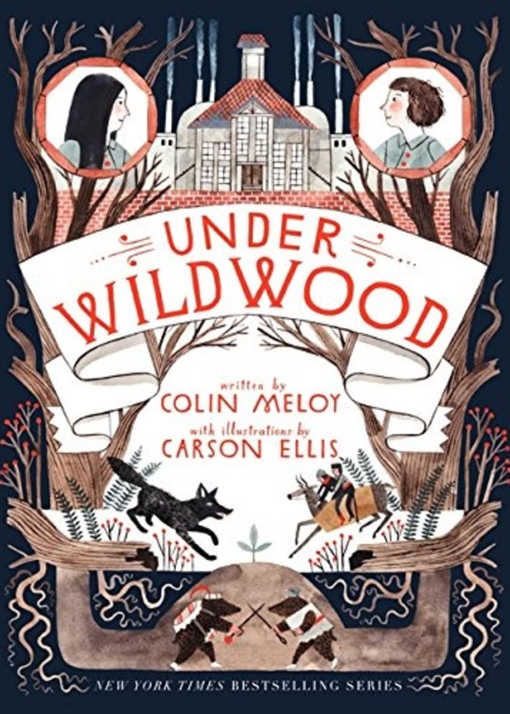 Wildwood Chronicles #02, Under Wildwood - Paperback