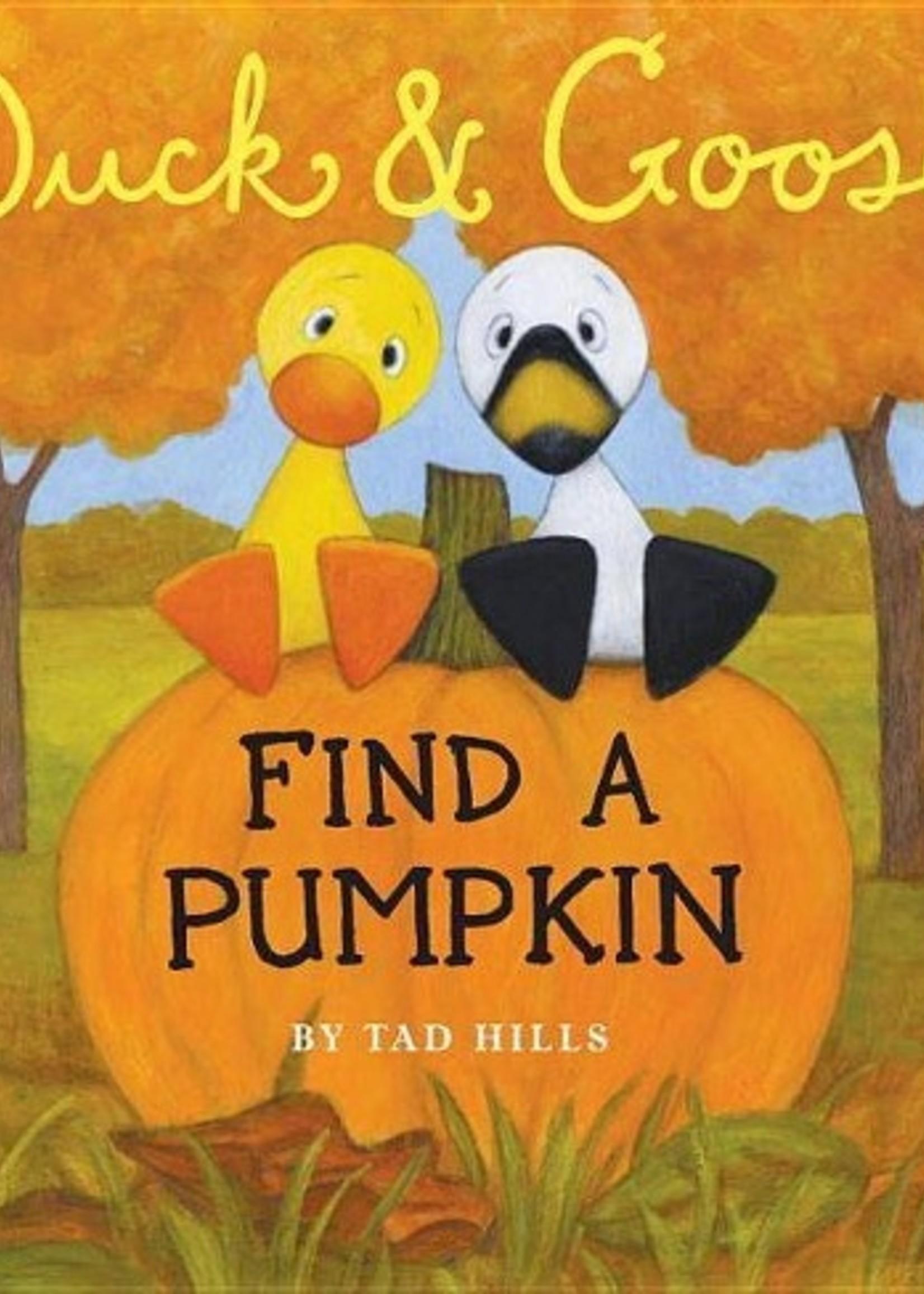 Duck and Goose Find a Pumpkin - Board Book