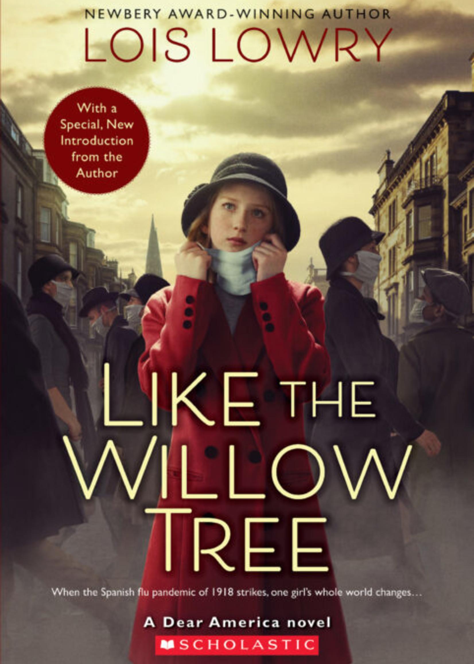 Dear America, Like the Willow Tree - Paperback
