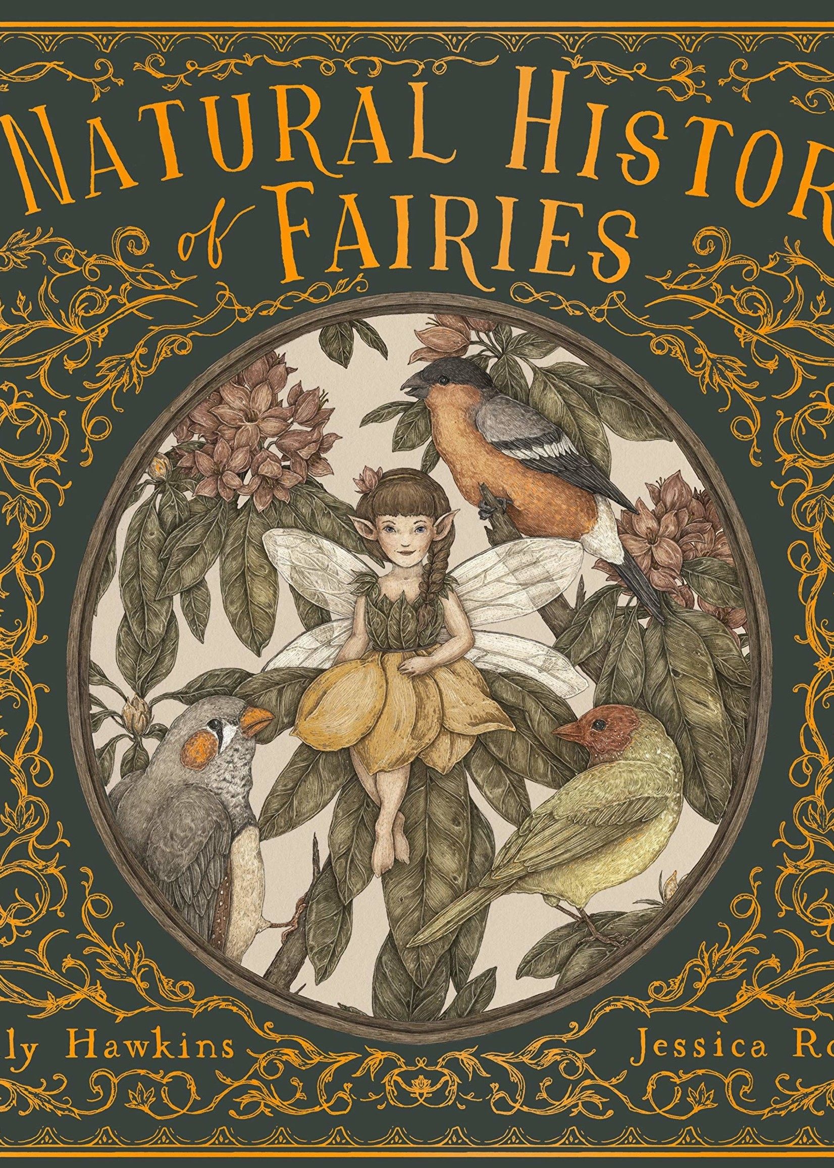 A Natural History of Fairies - Hardcover