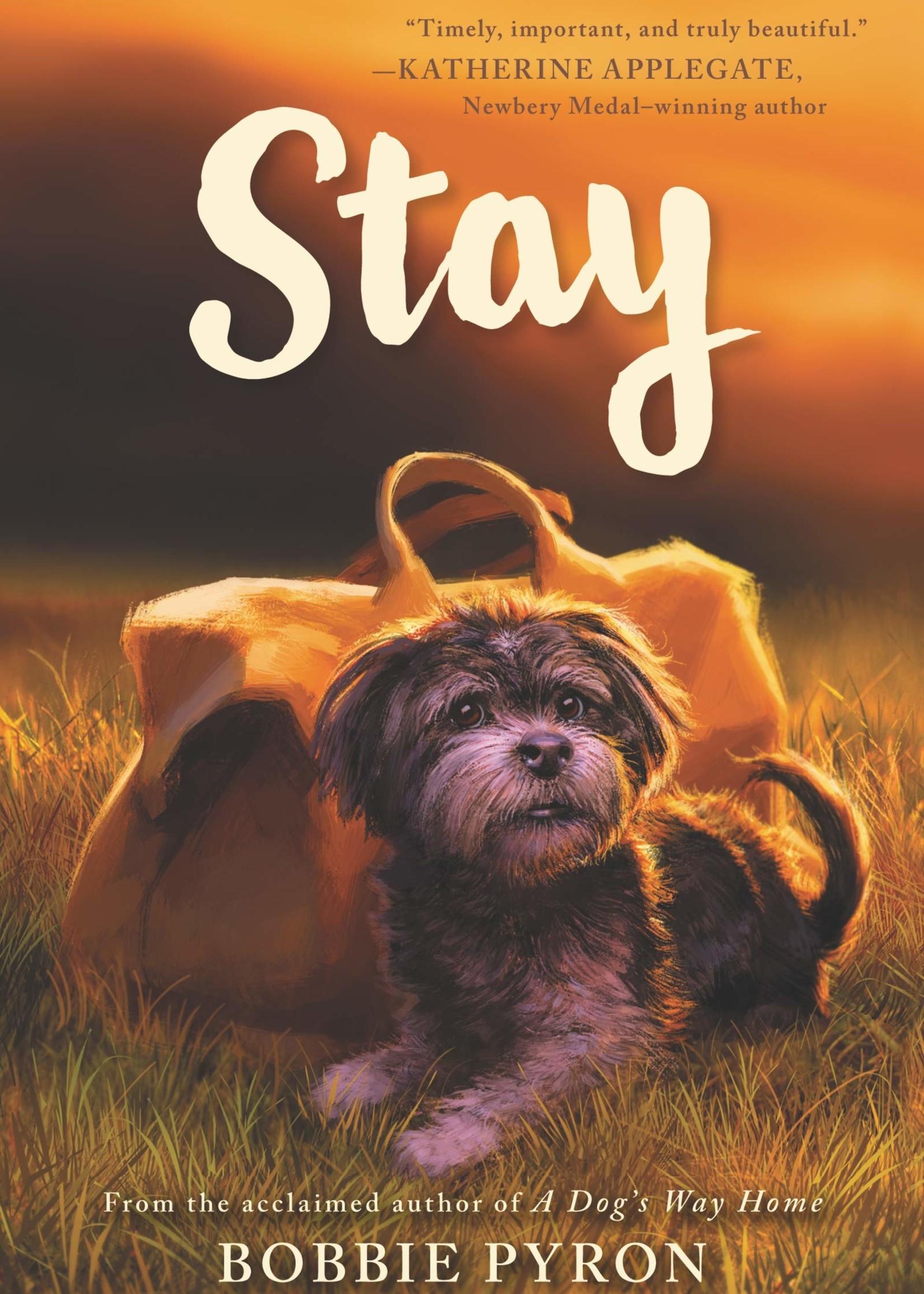 OBOB 21/22: Stay - Paperback