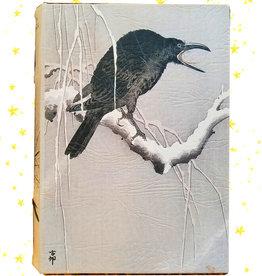 LadyJane Studios Raven's Big Book of Secrets Potion Kit