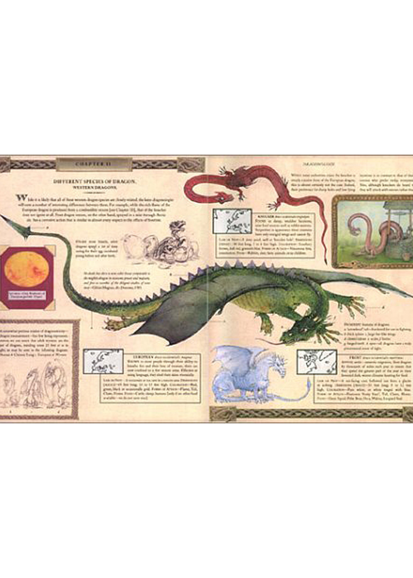 Dragonology, The Complete Book of Dragons - Hardcover