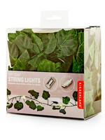 Ivy String LED Lights 10'  USB - Box