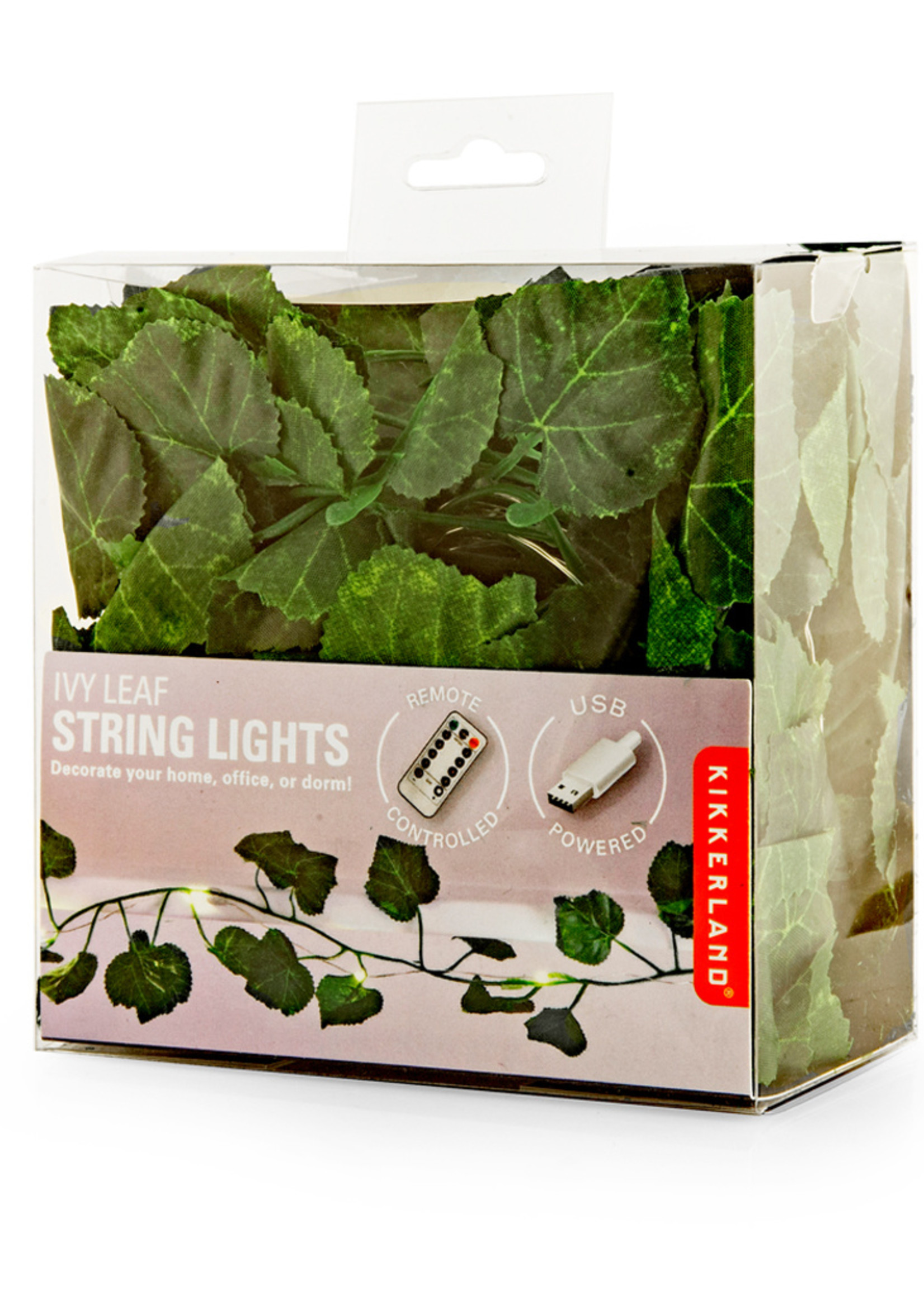 Ivy String LED Lights 10'  with USB - Box