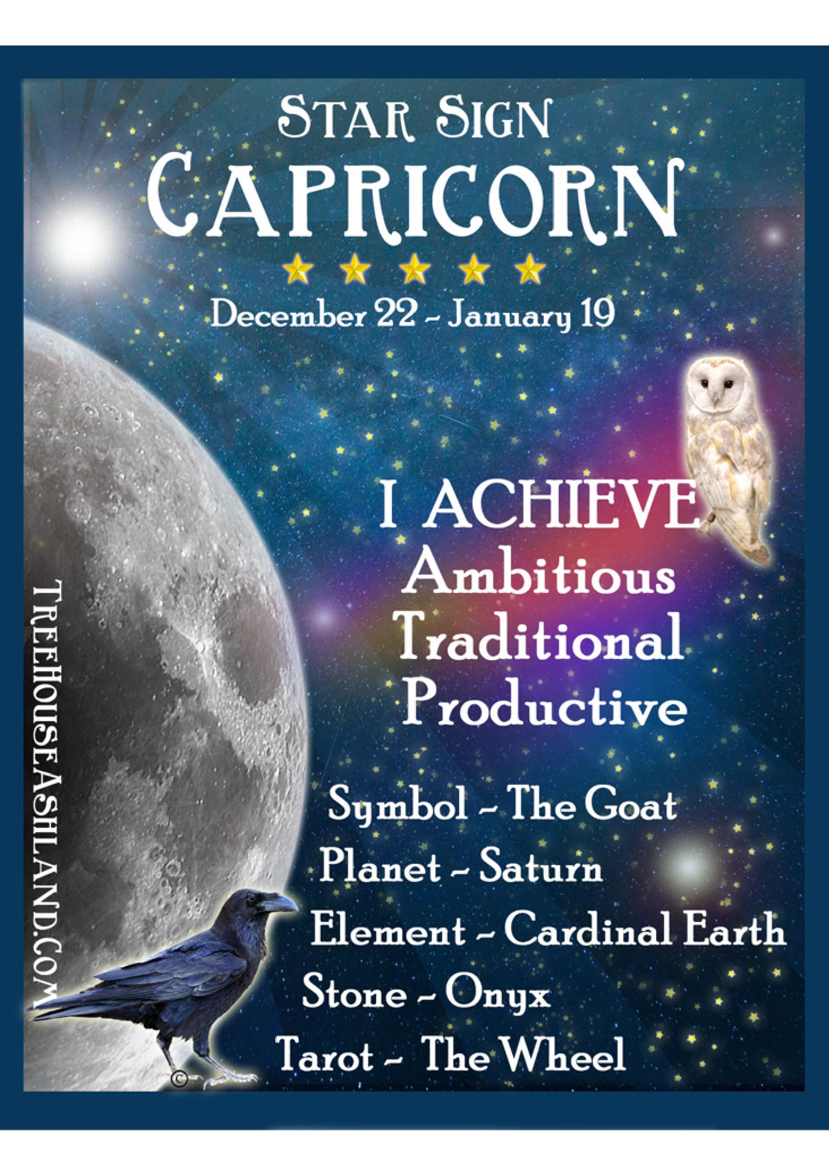 Star Sign Zodiac Kit, Capricorn