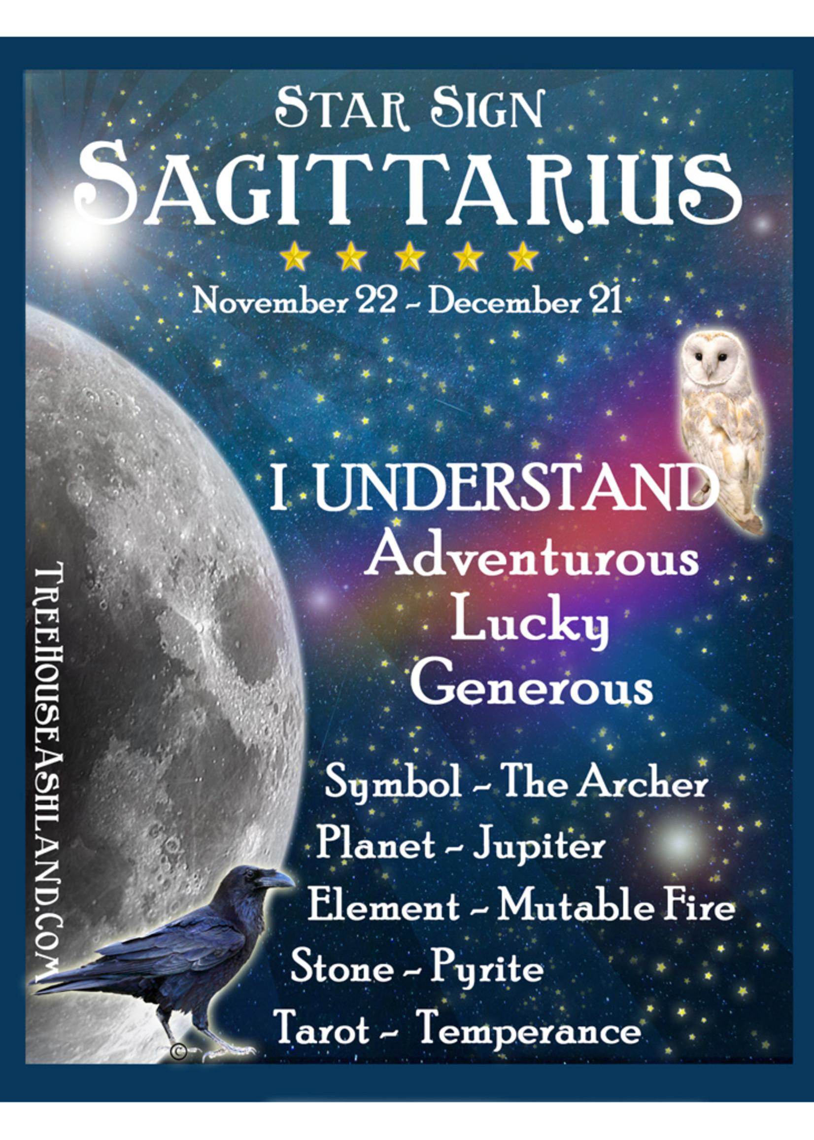 Star Sign Zodiac Kit, Sagittarius