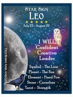 Star Sign Zodiac Kit, Leo