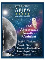 Star Sign Zodiac Kit, Aries