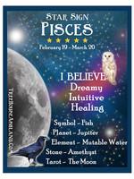 Star Sign Zodiac Kit, Pisces
