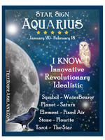 Star Sign Zodiac Kit, Aquarius