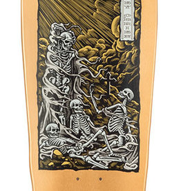 "Santa Cruz Skateboards Santa Cruz O'Brien Purgatory Reissue Deck 9.85"" x 30"""