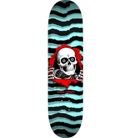 Powell Peralta Powell Peralta Ripper Skateboard Deck Pastel Blue - Shape 249 - 8.5 x 32.08