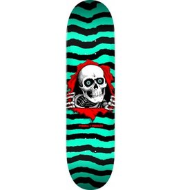 Powell Peralta Powell Peralta Ripper Skateboard Deck Green - Shape 245 - 8.75 x 32.95