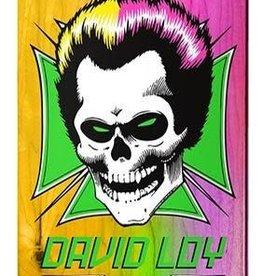 """Birdhouse Skateboards Birdhouse DL Skull Rainbow Deck 8.38"""""""