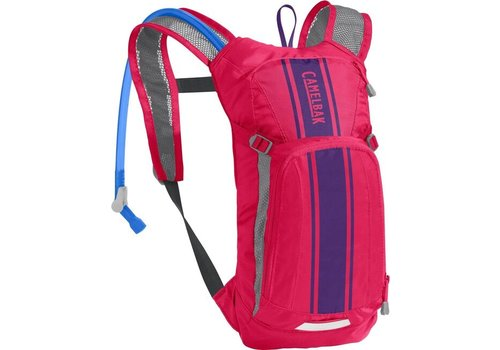 CAMELBAK Mini M.U.L.E. 50 oz - Hot Pink/Purple Stripe