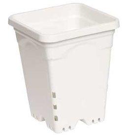 """Active Aqua Active Aqua Square White Pot 8"""" Tall, 6"""" x 6"""" Per Unit"""
