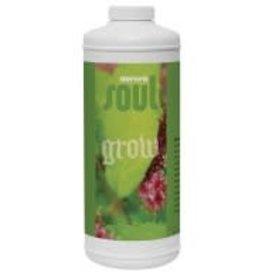 Aurora Soul Grow, 1 qt