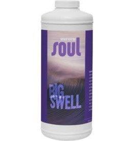 Aurora Soul Big Swell Cup