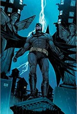 DC COMICS BATMAN SINS OF THE FATHER TP