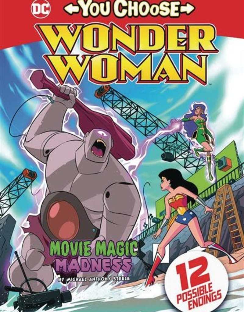 STONE ARCH BOOKS WONDER WOMAN YOU CHOOSE SC MOVIE MAGIC MADNESS