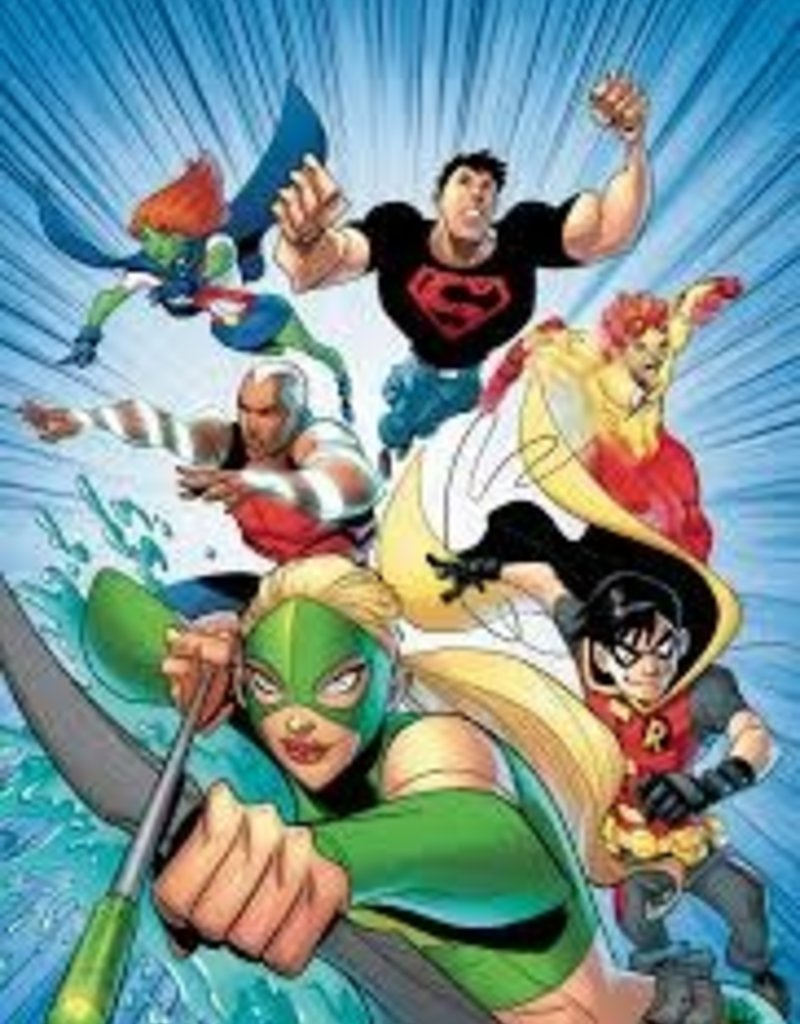 DC COMICS YOUNG JUSTICE THE ANIMATED SER TP BOOK 01 THE EARLY MISSIONS