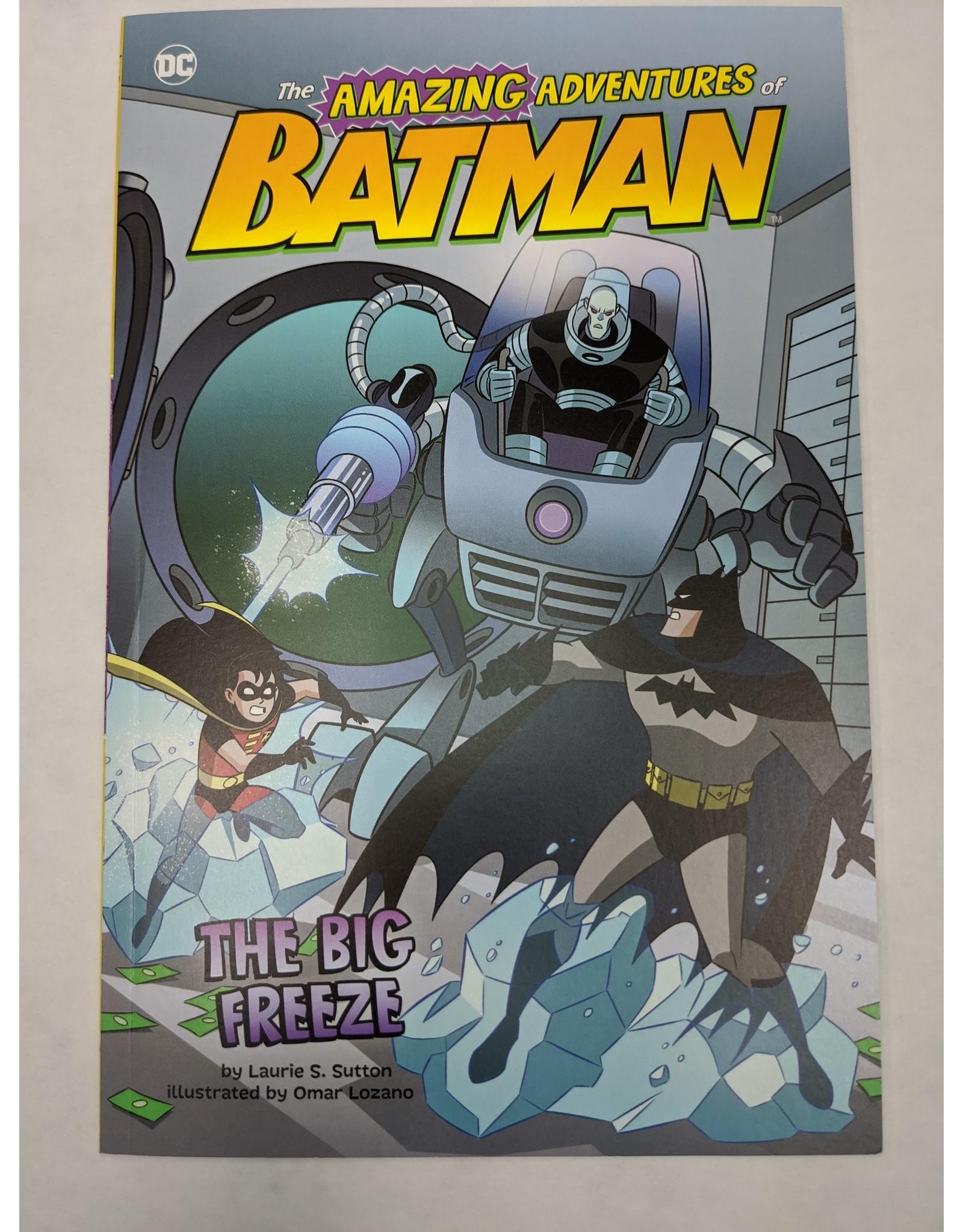 STONE ARCH BOOKS DC AMAZING ADV OF BATMAN YR SC BIG FREEZE