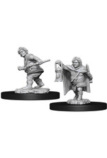 WIZARDS OF THE COAST D&D NOLZURS MARVELOUS HALFLING ROGUE