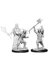WIZARDS OF THE COAST D&D NOLZURS MARVELOUS MALE HUMAN BARBARIAN W11