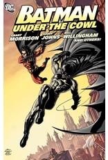 DC COMICS BATMAN UNDER THE COWL TP