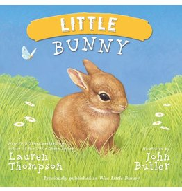 SIMON & SCHUSTER LITTLE BUNNY BOARD BOOK