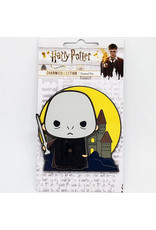 HARRY POTTER CHARM HOGWARTS VOLDEMORT PIN