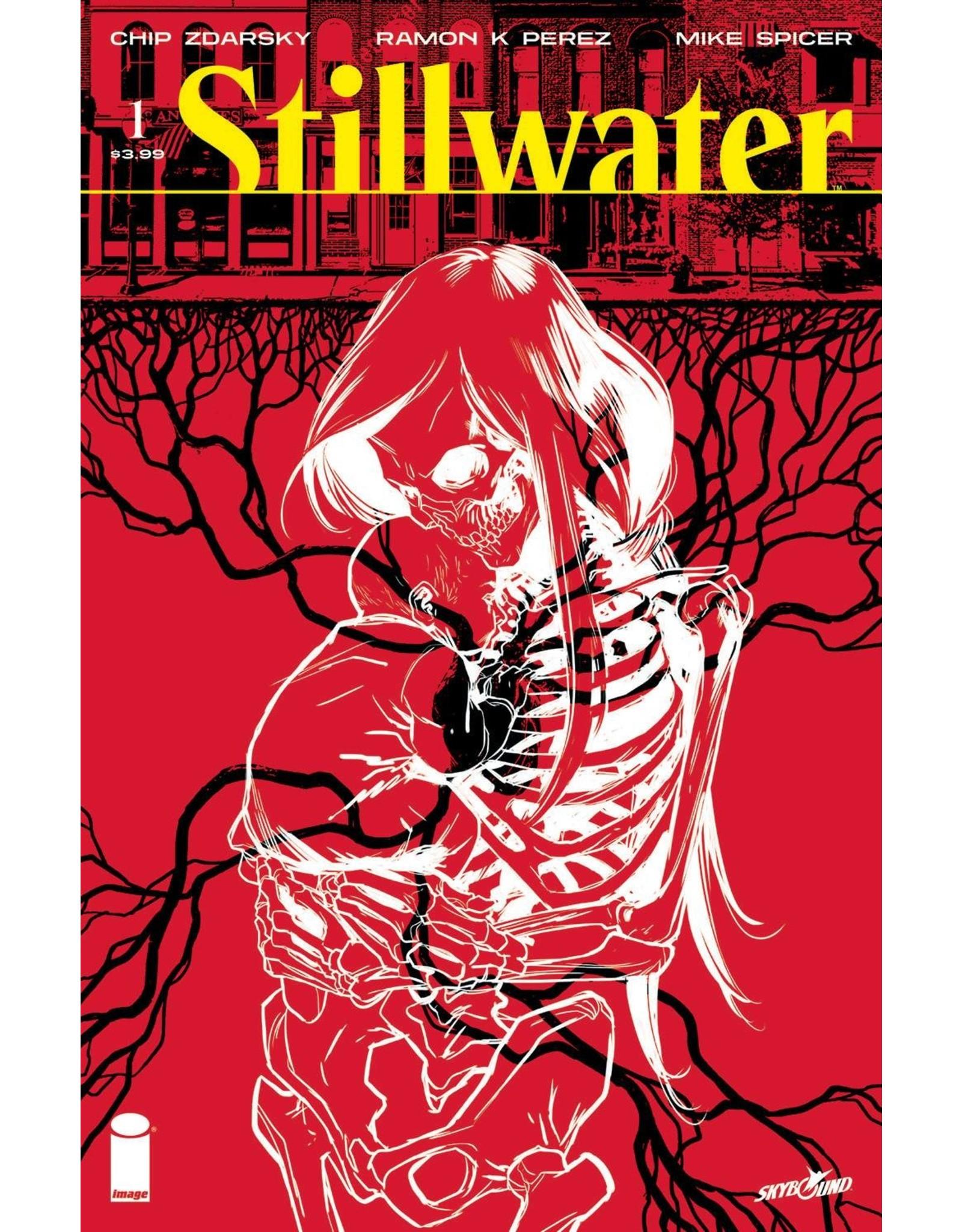 IMAGE COMICS STILLWATER BY ZDARSKY & PEREZ #1