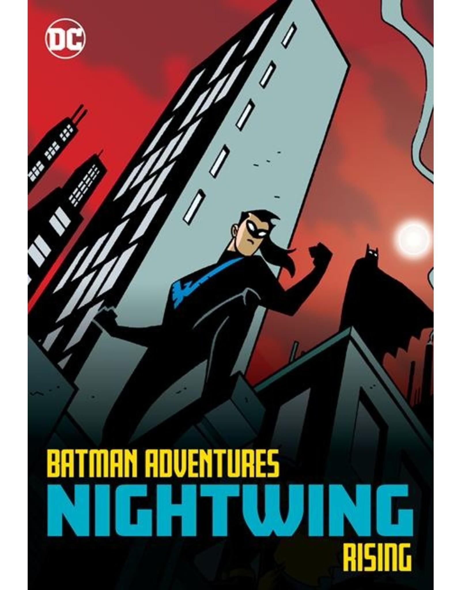 DC COMICS BATMAN ADVENTURES NIGHTWING RISING TP