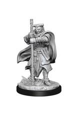 WIZKIDS D&D NOLZUR'S MARVELOUS HOBGOBLIN DEVESTATOR & IRON SHADOW UNPAINTED MINI W13