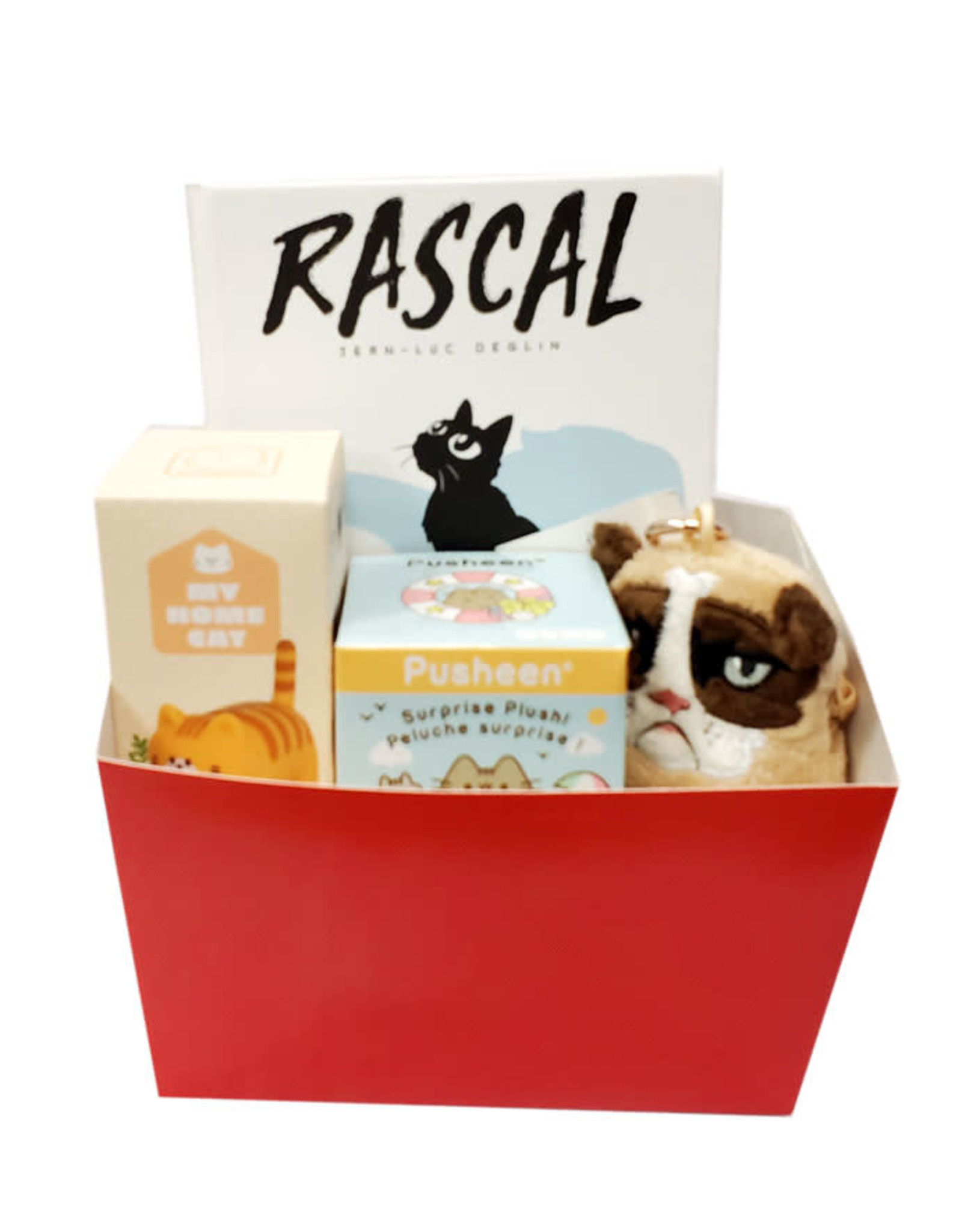 TINY CAT GIFT BASKET (FOR PEOPLE)