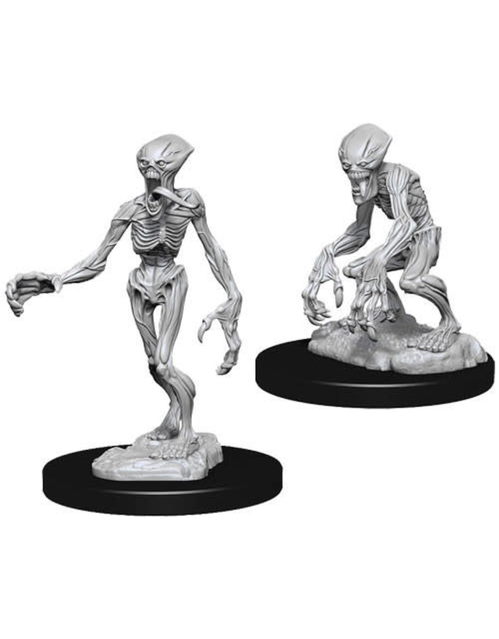 WIZKIDS DEEP CUTS PATHFINDER BATTLES DOPPELGANGERS UNPAINTED MINI
