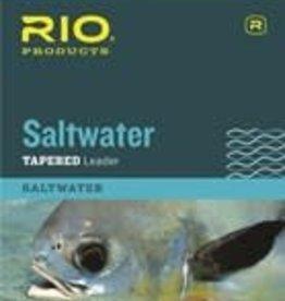 RIO Saltwater Leader 10' 20LB