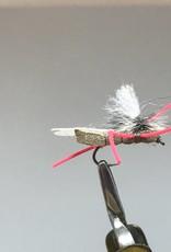 Red Legged Para Hopper, -