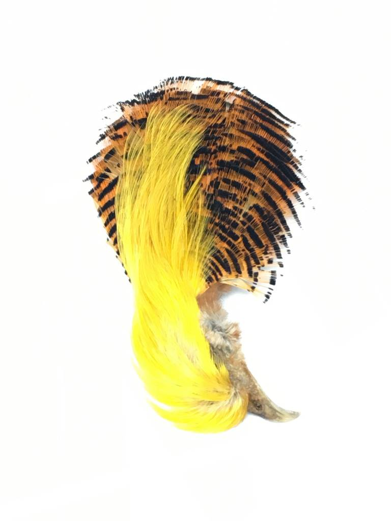 Fish Hunter Golden Pheasant Head w/Crest & Tippet