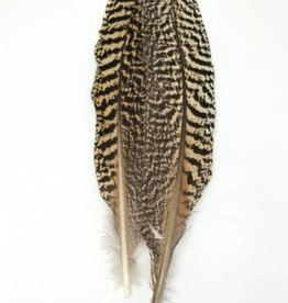 Hareline Dubbin Peacock Wing Quills, Pair