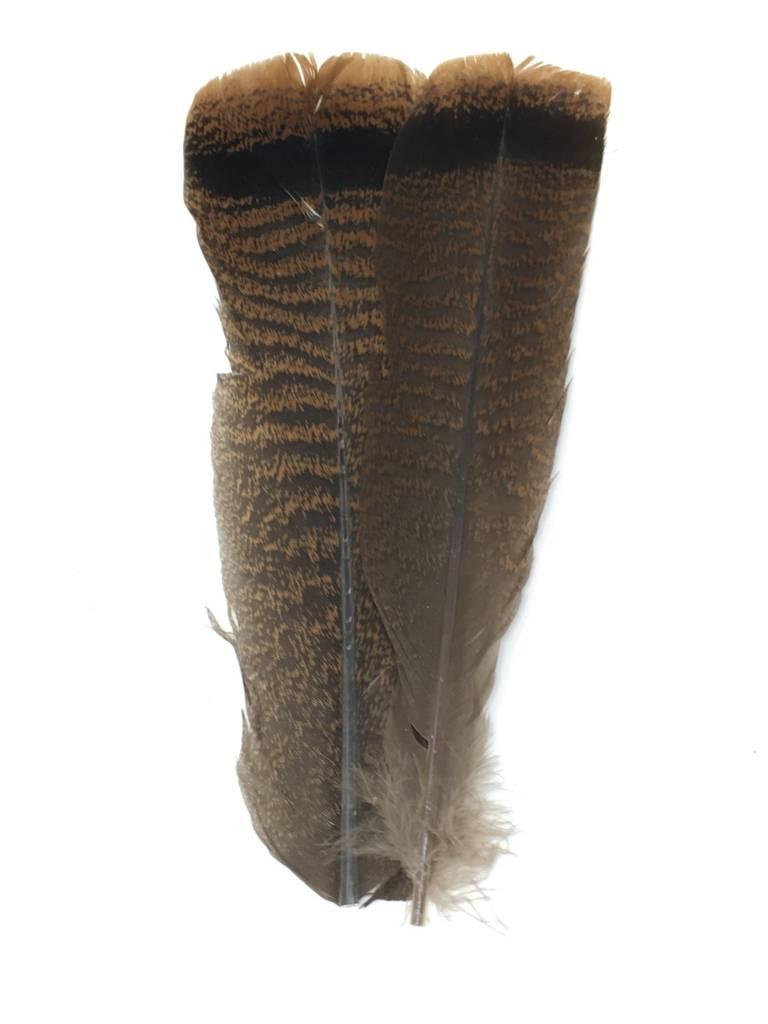 Fish Hunter Turkey Tail Tip - Dark Cinnamon