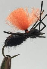 Hi-Vis Black Beetle