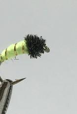 Caddis Worm -