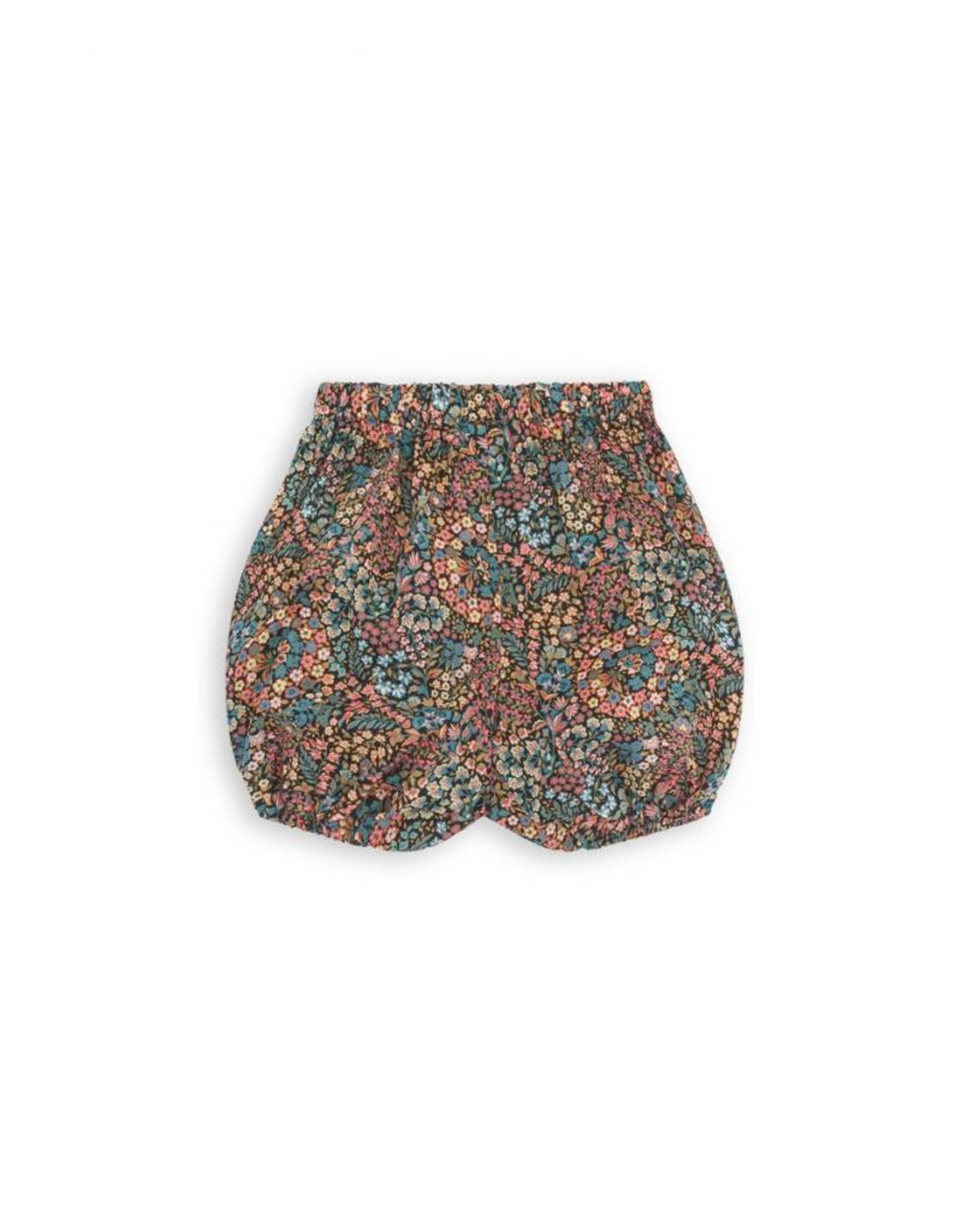 Bloomer, Liberty print