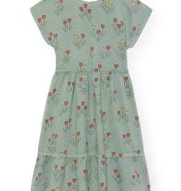 Poppy Prairie Princess dress