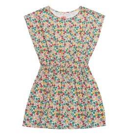 Dress, strawberry print