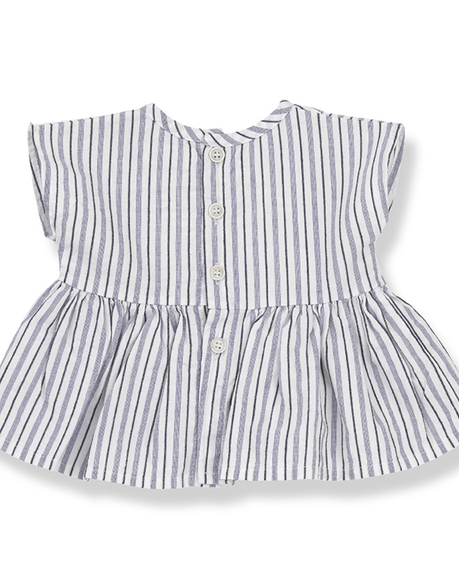 1+ in the family Vernazza blouse