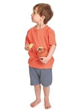 Tender leaf toys Boîte et ses biscuits